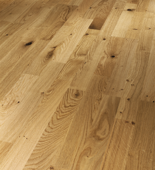 Maryland new - Moniga Oak